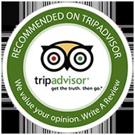 Free Tour Bilbao en Tripadvisor